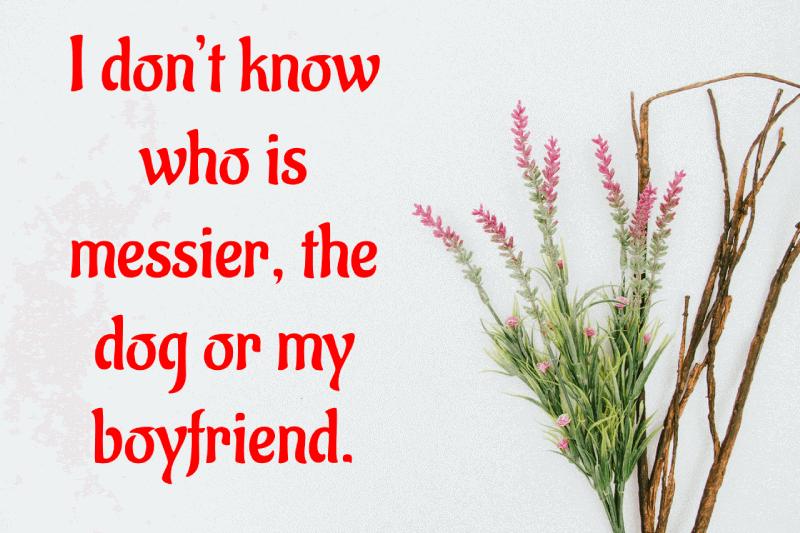 Taunting-Status-For-Ex-Boyfriend