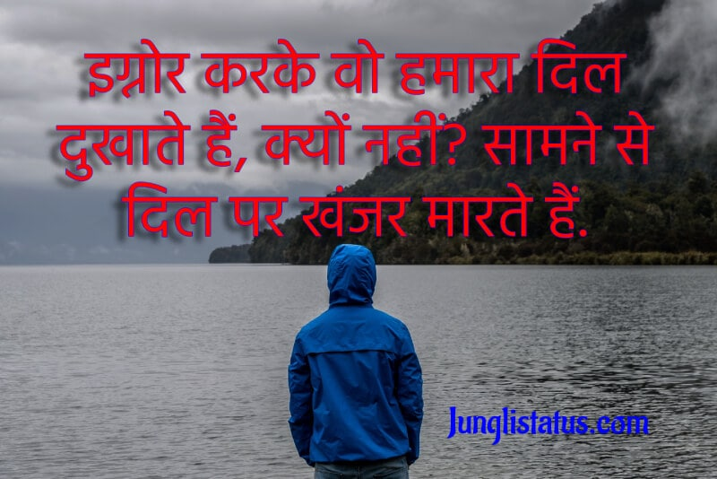 ignore-attitude-status-in-hindi