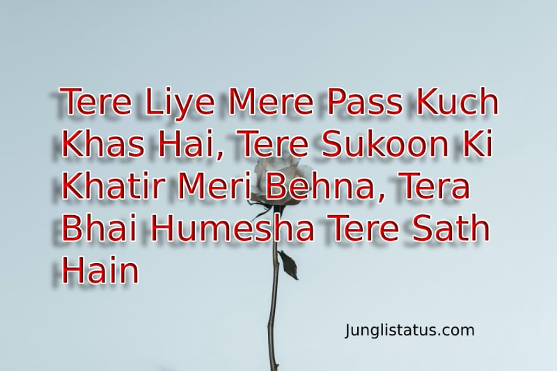 Brother-and-sister-quotes-in-Hindi