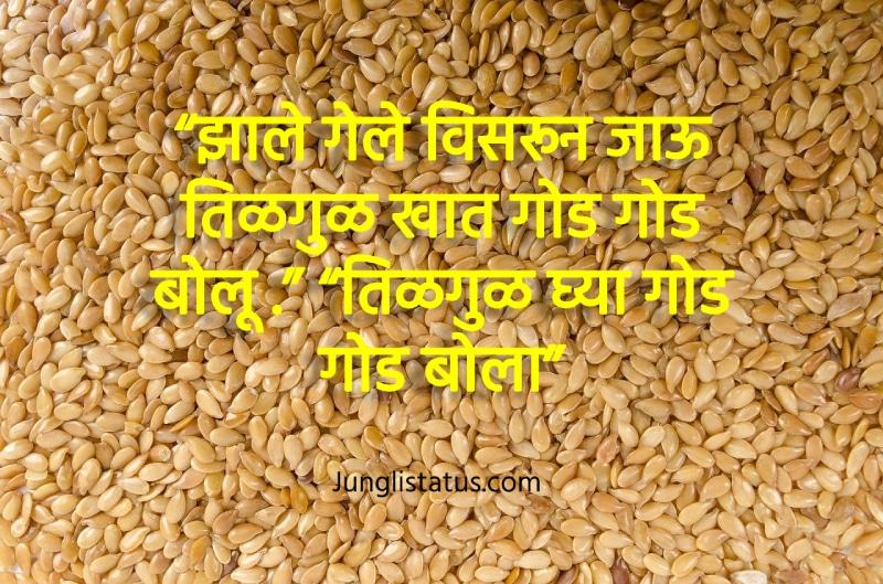 images-of-makar-sankranti-in-marathi